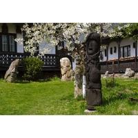 Muzeul Popa - Curtea cu sculpturi - aspecte 04.jpg