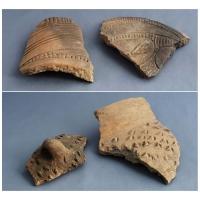Casa colectiilor - Sala 1 -  fragmente ceramica neolitica 01.jpg