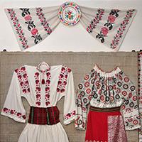 Muzeul Popa - Casa colectiilor_Sala_4